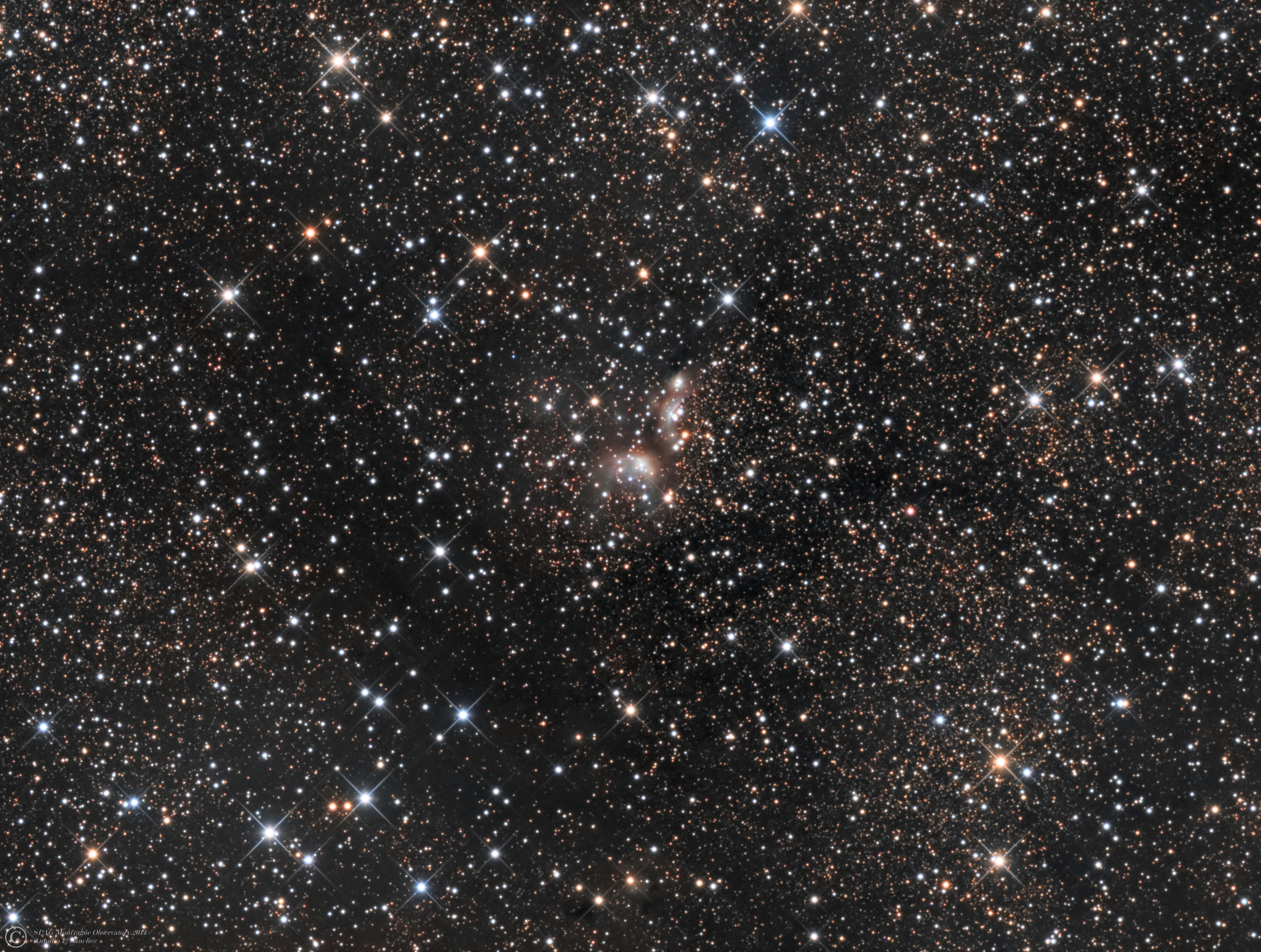 IC 4954,4955 (Vulpecula).jpg - IC 4954,4955 (Vulpecula) * May 2014 * ASA N12 astrograph (f/3.6,1078mm) * DDM85 mount * FLI ML8300 at -25ºC * LRGB Optec filter set * L: 264m R:110m G:90m B:110m * Unguided * IC 4954,also know as  the Little Ghost Nebula, is a reflection nebula in the constellation Vulpecula. Located  6000-8,000 light-years , this nebula is part of a larger system of newly formed stars. Stars in this area are roughly estimated 4 million years old.