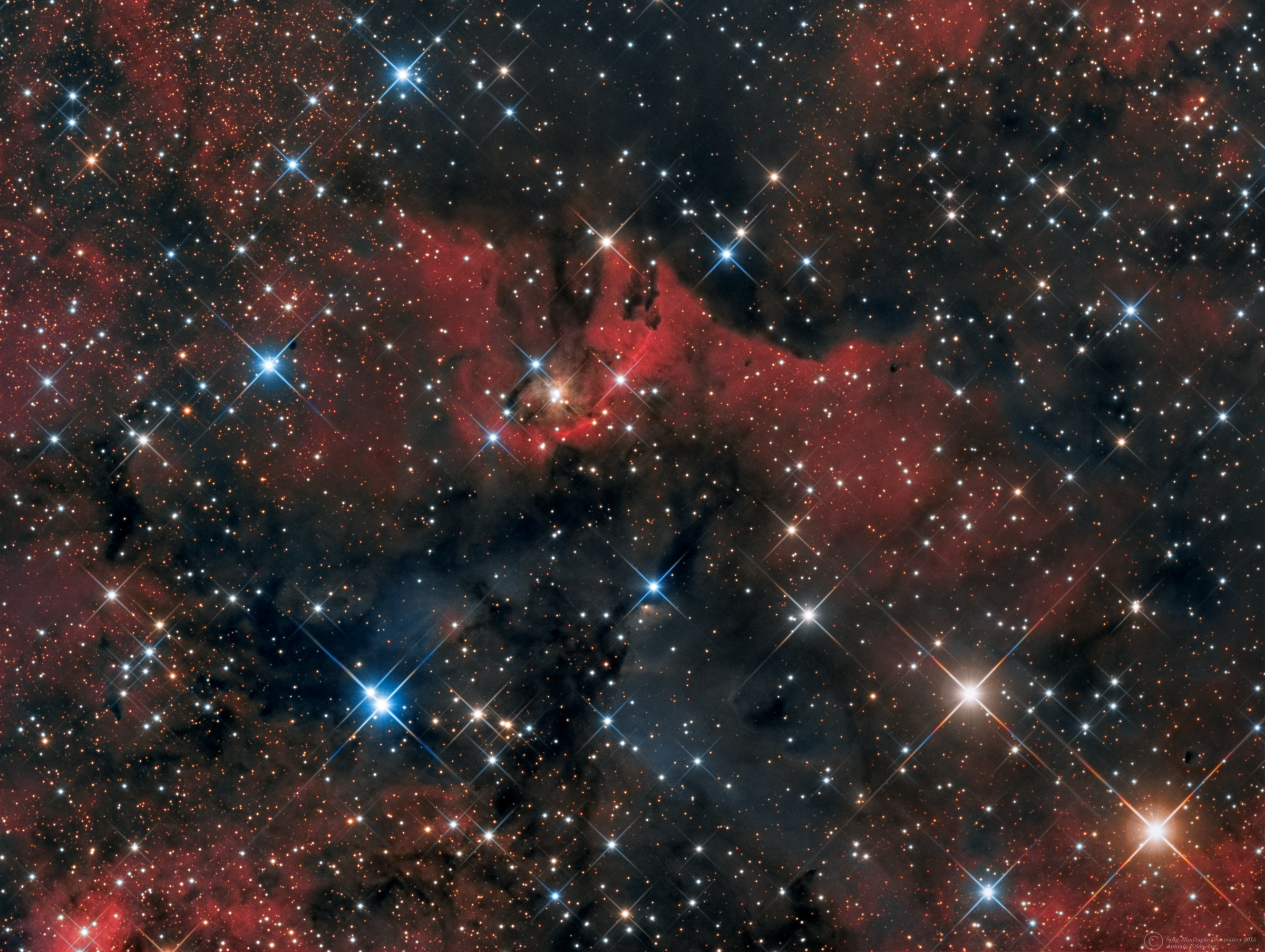 "LBN 248, HH425 (Cygnus).jpg - LBN 248,Herbig-Haro 425 (Cygnus) * August 2015 * ASA N12 astrograph (f/3.6, 1078mm) * DDM85 ASA mount * FLI ML8300 * LRB Optec filter set * L:410m R:170m G:160m B:200m * Unguided * Herbig–Haro (HH) objects are small patches of nebulosity associated with newly born stars, and are formed when narrow jets of gas ejected by young stars collide with clouds of gas and dust nearby at speeds of several hundred kilometres per second. Herbig–Haro objects are ubiquitous in star-forming regions, and several are often seen around a single star, aligned with its rotational axis.HH objects are transient phenomena, lasting not more than a few thousand years. They can evolve visibly over quite short astronomical timescales as they move rapidly away from their parent star into the gas clouds of interstellar space (the interstellar medium or ISM). Hubble Space Telescope observations have revealed the complex evolution of HH objects over the period of a few years, as parts of the nebula fade while others brighten as they collide with clumpy material of the interstellar medium.The objects were first observed in the late 19th century by Sherburne Wesley Burnham, but were not recognised as being a distinct type of emission nebula until the 1940s. The first astronomers to study them in detail were George Herbig and Guillermo Haro, after whom they have been named. Herbig and Haro were working independently on studies of star formation when they first analysed the objects, and recognised that they were a by-product of the star formation process.LBN 248 is a  very interesting and strange reflection nebula surrounding the low part of the photograph. This area is rarely  imaged. Thanks to Mr. Sakib Rasool for suggesting this target. .Information credits:  Reipurth B. (1999). ""A General Catalogue of Herbig–Haro Objects,"".Wikipedia."