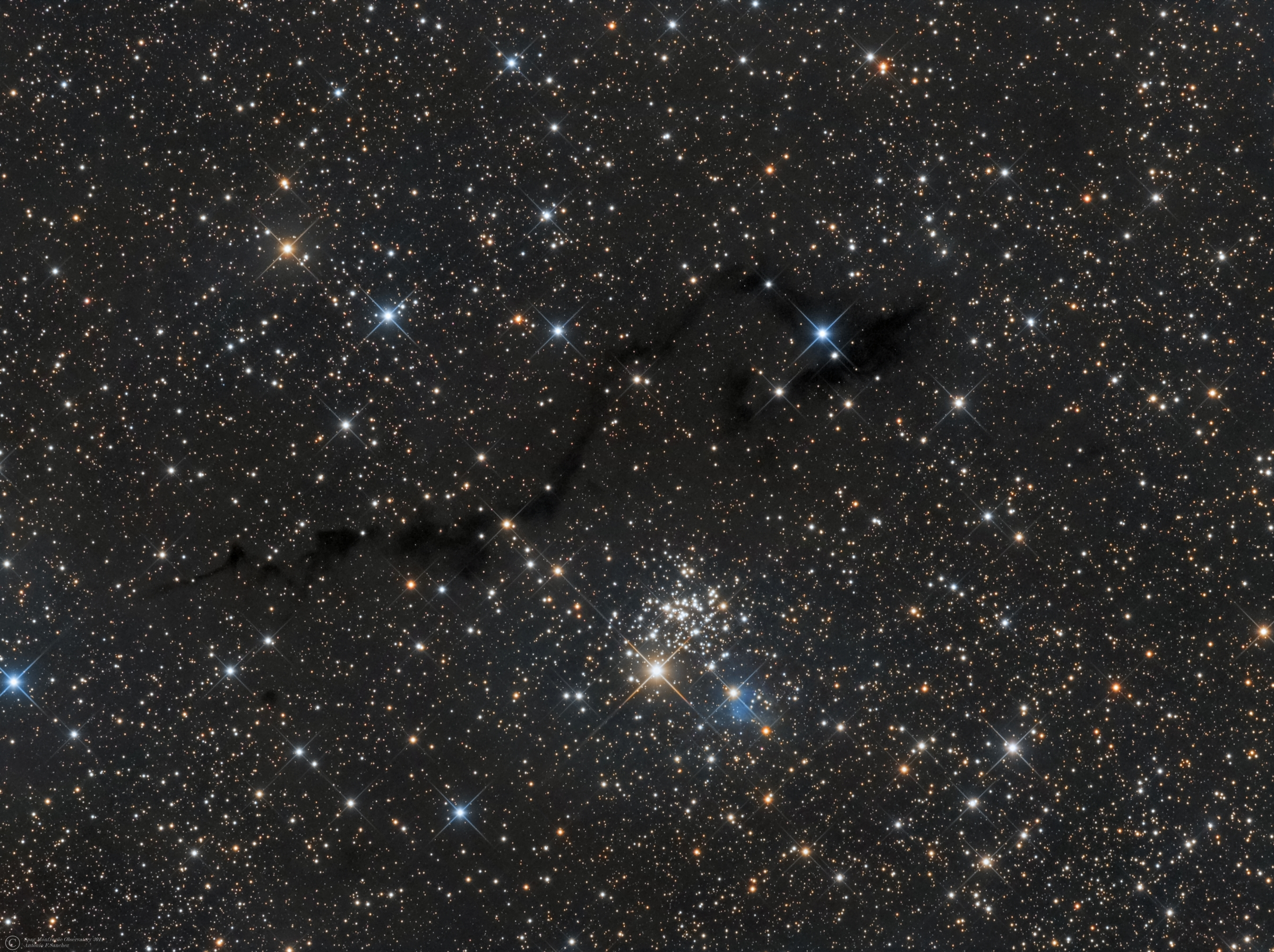"NGC 654,VdB6,LDN 1332,1334,1337 (Cassiopeia).jpg - NGC 654,VdB6,LDN 1332,1334,1337 (Cassiopeia) * August-September 2014 * ASA N12 astrograph (f/3.6,1078mm) * DDM85 mount * FLI ML8300 at -25ºC * Optec LRGB filter set * L.520m R:180m G:160m B:210m * Unguided * NGC 654 is a young cluster,with an age of about 14 million years.The cluster`s 80 measured members (7th magnitude and fainter) appear in little clumps scattered across a mere 6´of sky,or 14 lightyears. Astronomers have taken keen interest in NGC 654 because of it displays nonuniform extinction across its face,with stars reddened by about 1 magnitude on average.Color excess indicates the amount of interstellar reddening suffered by the light from the star when it passes through dust in space.Data from Indian Astronomer Biman J. Medhi and colleagues (2008), show evidence for the presence of at least two layers of dust along the line of sight to the cluster, which lies at a distance of about 7800 light-years.The 7th magnitude yellow supergiant star HD 10494 is a likely member of this cluster with a recessional velocity of about 31km/sec.They estimate the distances to the two dust layers to be about 652 and 3300 light-years, placing the clouds much closer to the Sun than the cluster.The foreground dust grains,appear to be responsible,then, for the nonuniform extinction towards the cluster,whose least reddened stars lie close to the cluster center.VdB 6 is a little reflection nebula. The star wrapped in vdB 6 is listed as HIP 8074 of magnitude 9.66, located in the Perseus arm, which gives the nebula a distinctly bluish color.Credits: Stephen James O´Meara        ""Deep-Sky Companions:The Secret Deep, Vol 4""         Italian Wikipedia"